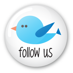 twitter button follow us